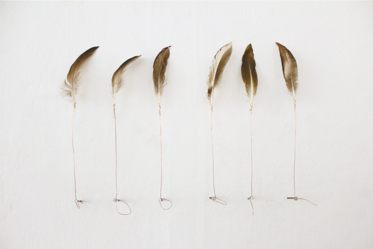 R.FUERST_MONUMENTS_FEATHERS*